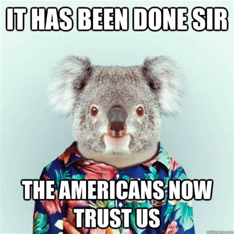 Koala Memes - koala memes google search funny stuff pinterest animal