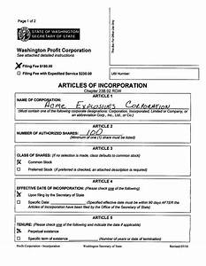 s corporation bylaws template - illinois corporation bylaws template templates data