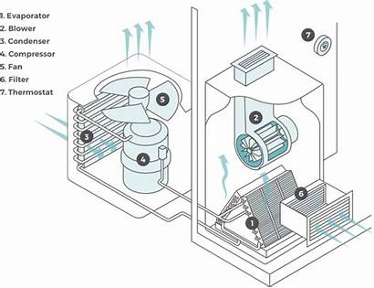 Air Diagram Central Installation Heating System Observer