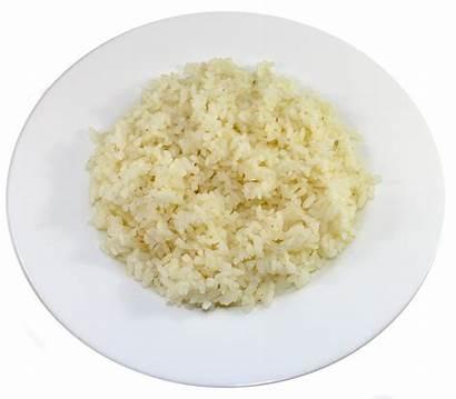 Rice Clipart Transparent Steamed Japanese Purepng Webstockreview