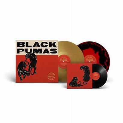 Pumas Deluxe Edition Vinyl Records Combo 2xlp