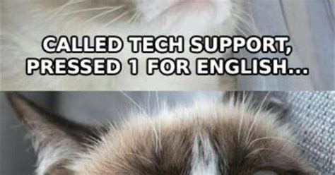 Grumpy Cat Hates Calling Tech Support Funny Cats