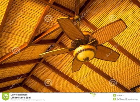 ventilateur de plafond photo libre de droits image 30190075