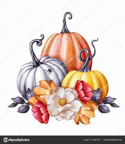Halloween Watercolor Floral Autunno Clip Pumpkins Floreali