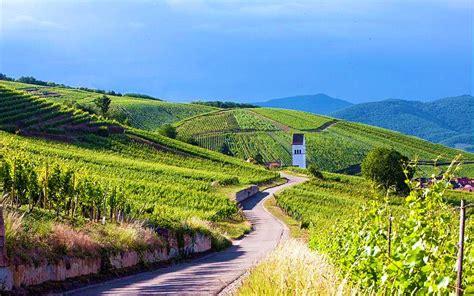 chambre d hote route des vins alsace route des vins d alsace pfaffenheim escapades de charme