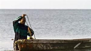 Le Prix Le Moins Cher : gabon au capal le prix du poisson reste moins cher rfi ~ Medecine-chirurgie-esthetiques.com Avis de Voitures