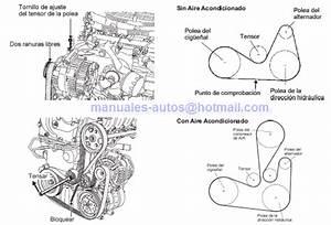 Manual De Reparacion Nissan Platina 2002 2003 2004 2005 2006