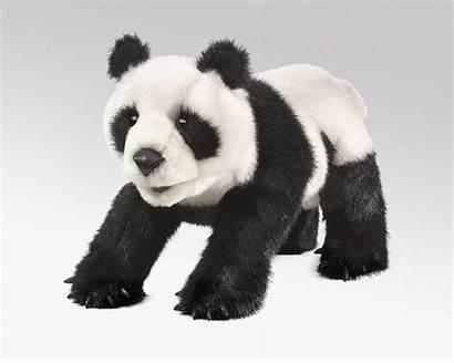 Panda Hand Puppet Folkmanis Puppets Kidsbooksandpuppets