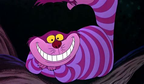 Standards For Mathematical Practice Cheshire Cat's Grin
