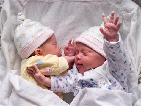 Twins Fetal Development Month By Month Photo Gallery