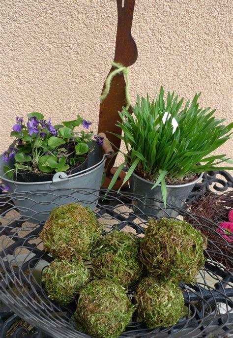 welche kräuter kann ich zusammen pflanzen mooskugeln deko moos blumen und garten