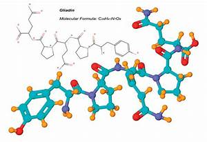 The gallery for --> Gluten Protein Structure