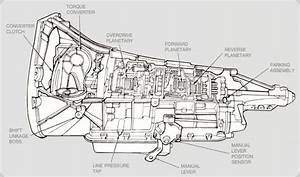Ford E40d Transmission Diagram : 94 transmission issues ford f150 forum community of ~ A.2002-acura-tl-radio.info Haus und Dekorationen