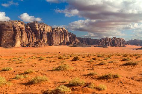 desert landscaping desert landscape google search nomads pinterest