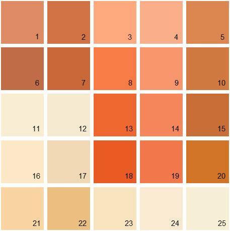 best 60 rustic orange paint design ideas of best 25