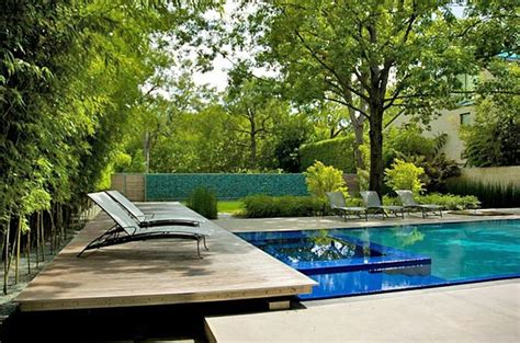 plants to put around a pool landscaping and designing your pool area outdoor living direct
