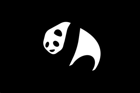keren  foto wallpaper panda richa wallpaper