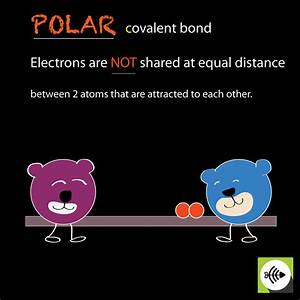 What Is Polar Covalent Bond