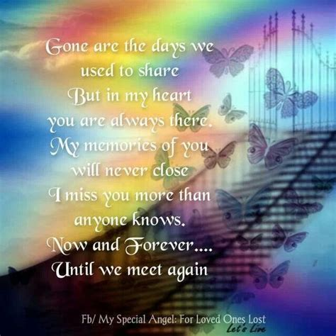 Until We Meet Again Heaven Quotes