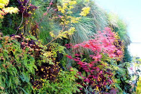 Plants On Walls-luscious Shade Vertical Garden