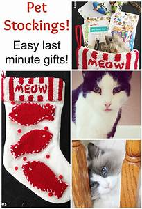 Last Minute Christmas Gifts Three Must Haves For An