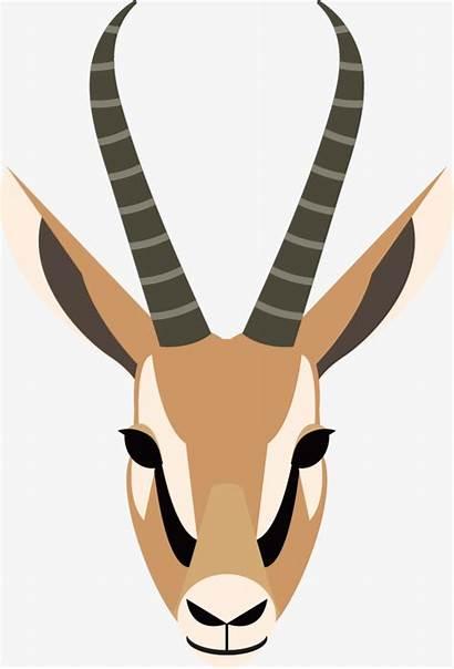 Antelope Clipart Horns Horn Clip Ear Pretty