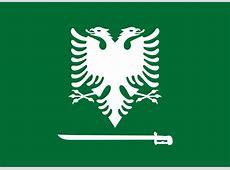 Flag of Saudi Albania vexillology