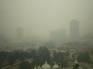 Smog   The Global Fool
