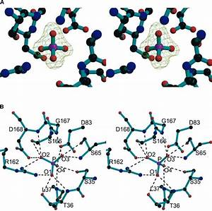 Crystal Structure Of M  Tuberculosis Abc Phosphate
