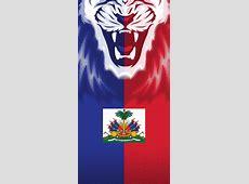 Haitian Flag Face Soca Flag Face Mask Bandanas Cool