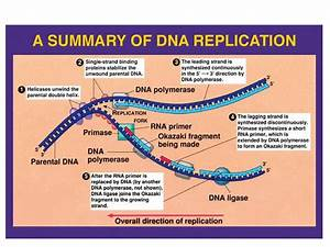 nanoHUB.org - Resources: [Illinois] Phys550 Lecture 21 ...