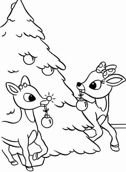 Rudolph Coloring Christmas Pages Tree Clarice Decorated