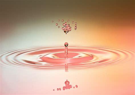 circle merah muda gambar cair daun bunga basah jantung kawah berwarna