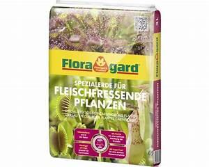 Fleischfressende Pflanzen Kaufen : fleischfressende pflanzen erde floragard 3 l bei hornbach ~ Michelbontemps.com Haus und Dekorationen
