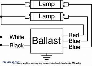 4 Bulb Ballast Wiring Diagram