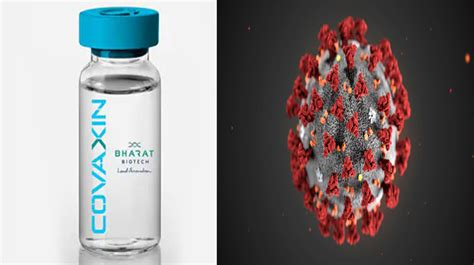 India's COVID-19 Vaccine COVAXIN Likely To Be Ready By ...
