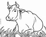 Cow Coloring Pages Cows Cool2bkids Printable Printables Drawing Moose Line Animal Sheets Realistic Animals Face Stenciling Stencils Sketches Templates Adults sketch template