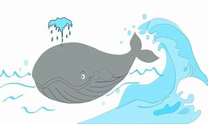 Ballena Whale Clipart Openclipart Transparent Webstockreview Into
