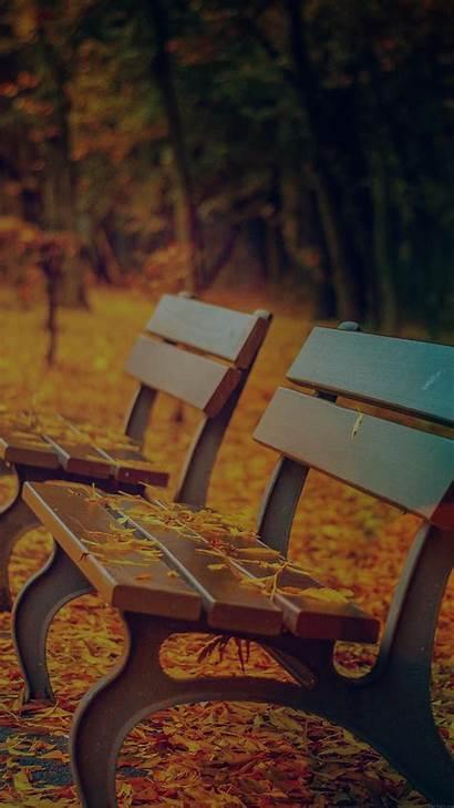 Autumn Dark Leave Iphone Fall Mountain Nature