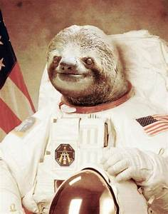 Astronaut Sloth | www.pixshark.com - Images Galleries With ...