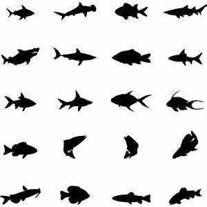 Fish Vector Free