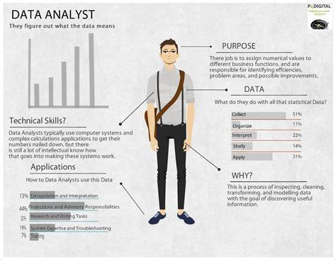 data analyst infographics data science