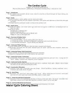 35 Biogeochemical Cycles Webquest Worksheet Answers