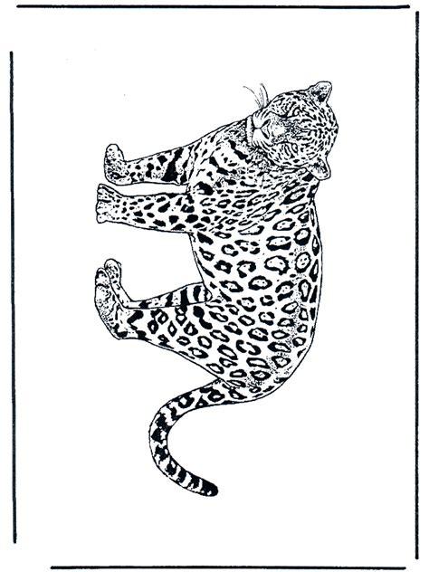 leopard  malvorlagen katzenartigen