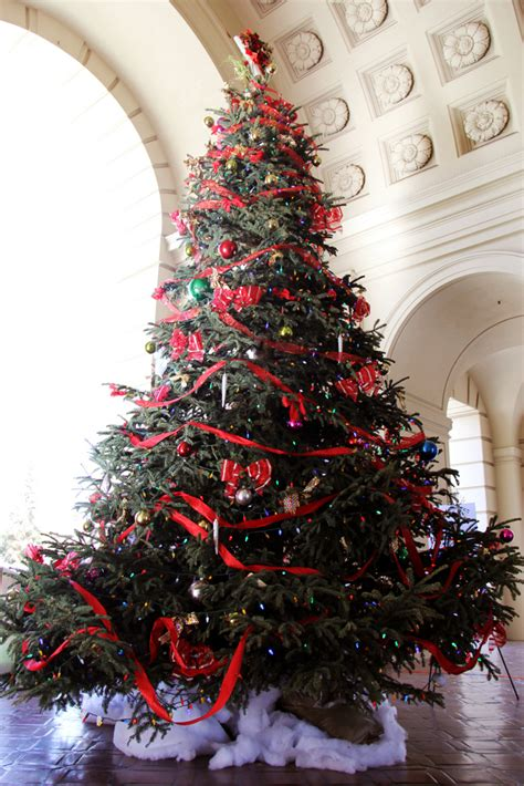 how much does a live christmas tree cost how to create a country tree live with flair