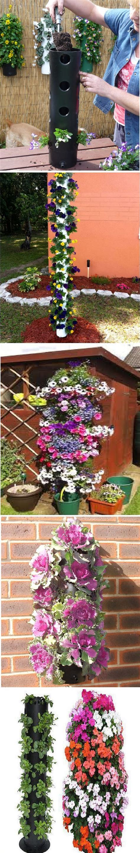 Polanter Vertical Gardening System by Best 25 Grow Strawberries Ideas On How To