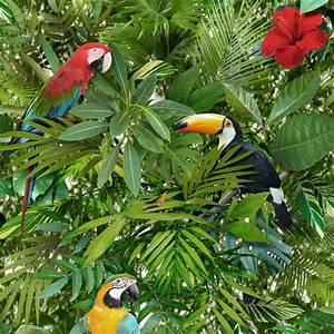 BEAUTIFUL EXOTIC AND TROPICAL BIRDS THEMED WALLPAPERS