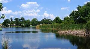 North Triplet Lake in Casselberry, Florida image - Free ...