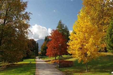 10 immagini per innamorarsi dell autunno in valsugana e lagorai visit valsugana blogvisit