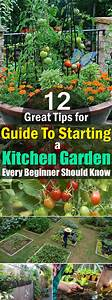 12 Great Tips For Starting A Kitchen Garden Every Beginner
